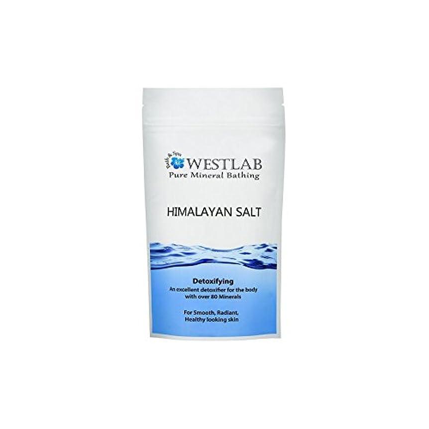 到着逃す待つヒマラヤ塩の1キロ x2 - Westlab Himalayan Salt 1kg (Pack of 2) [並行輸入品]