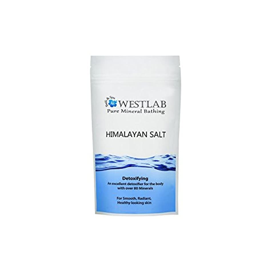 計画的バルセロナワードローブヒマラヤ塩の1キロ x4 - Westlab Himalayan Salt 1kg (Pack of 4) [並行輸入品]