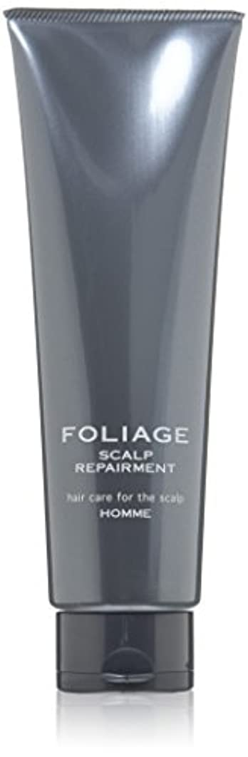 中野製薬 フォリッジ スキャルプリペアメント 250g