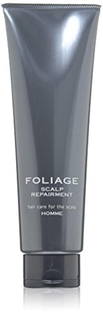 クック欲求不満コンテンポラリー中野製薬 フォリッジ スキャルプリペアメント 250g