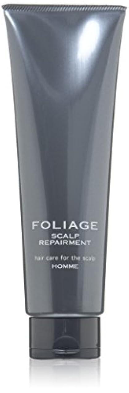 無能くぼみ弱点中野製薬 フォリッジ スキャルプリペアメント 250g