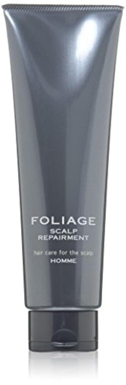 レバー法王自治的中野製薬 フォリッジ スキャルプリペアメント 250g