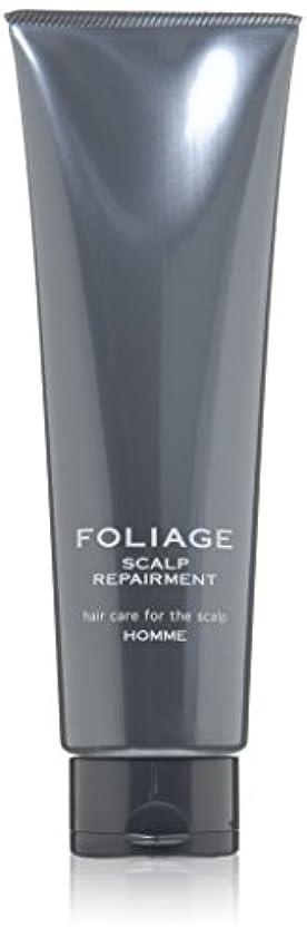 軽減する敵対的うまくいけば中野製薬 フォリッジ スキャルプリペアメント 250g
