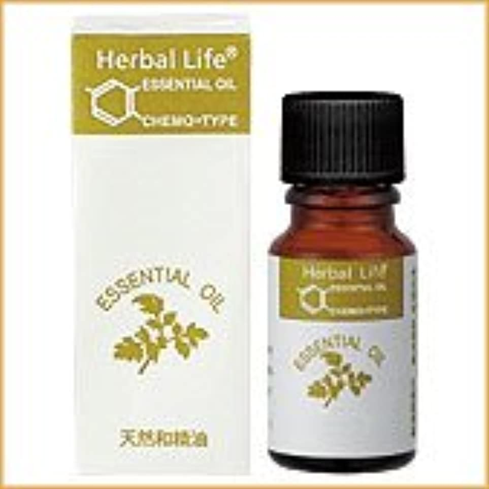 生活の木 アロマオイル ヒバ 10ml (Tree of Life Essential Oil/エッセンシャルオイル)