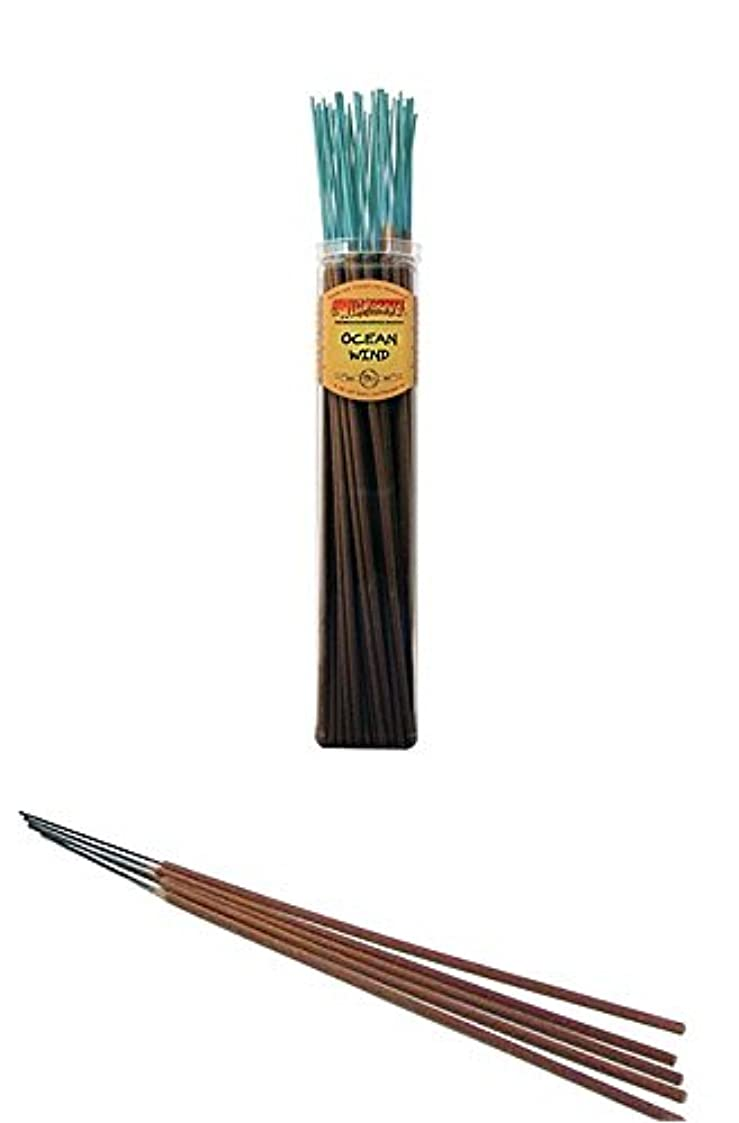 炭素北方アルファベット海洋風 – Wild Berry Highly Fragranced Large Incense Sticks