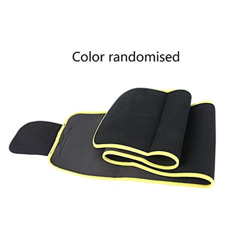 八百屋さんドリルスポークスマンウエストバンドウエストをトレーニングする男性女性のための通気性の複合腰椎サポート-Rustle666