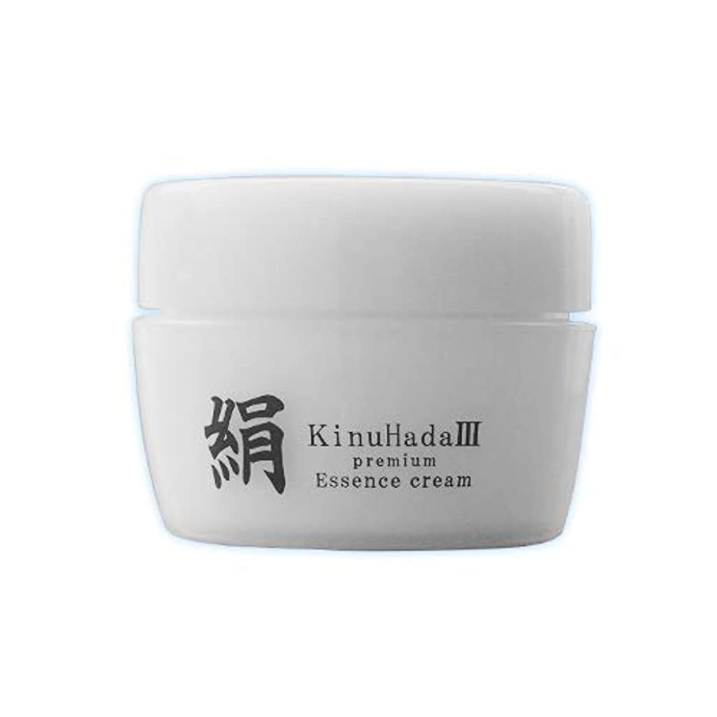 最後のハーフすぐにKinuHada 3 premium 60g オールインワン 美容液 絹
