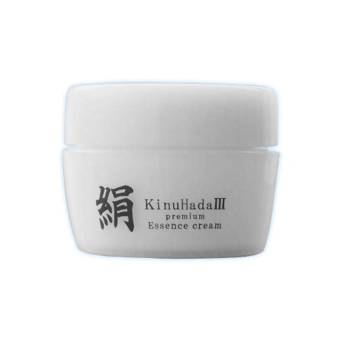 割り込み送った永遠にKinuHada 3 premium 60g オールインワン 美容液 絹