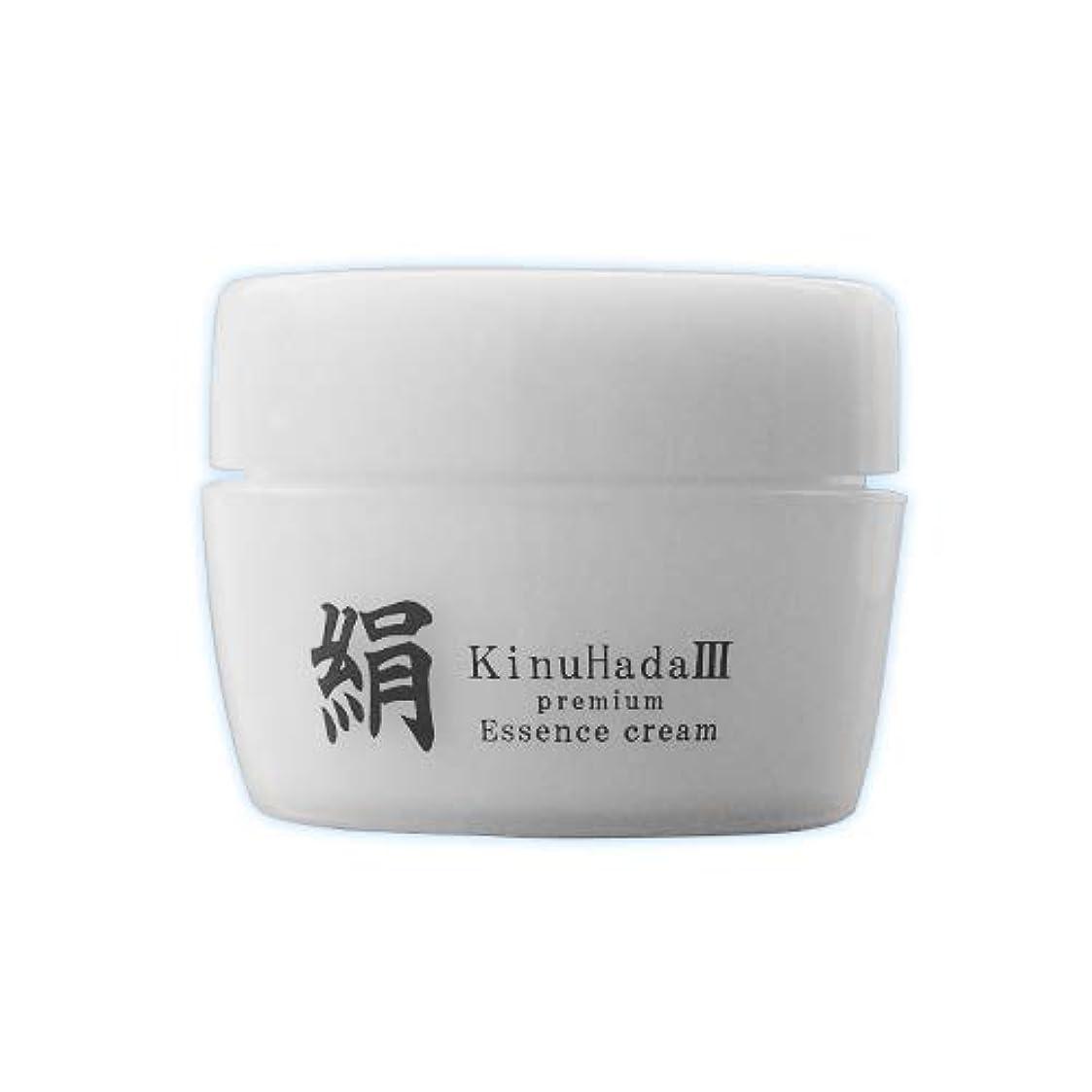 実際の早める名前KinuHada 3 premium 60g オールインワン 美容液 絹