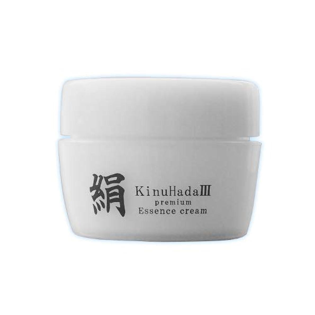 同種の限界ライオネルグリーンストリートKinuHada 3 premium 60g オールインワン 美容液 絹