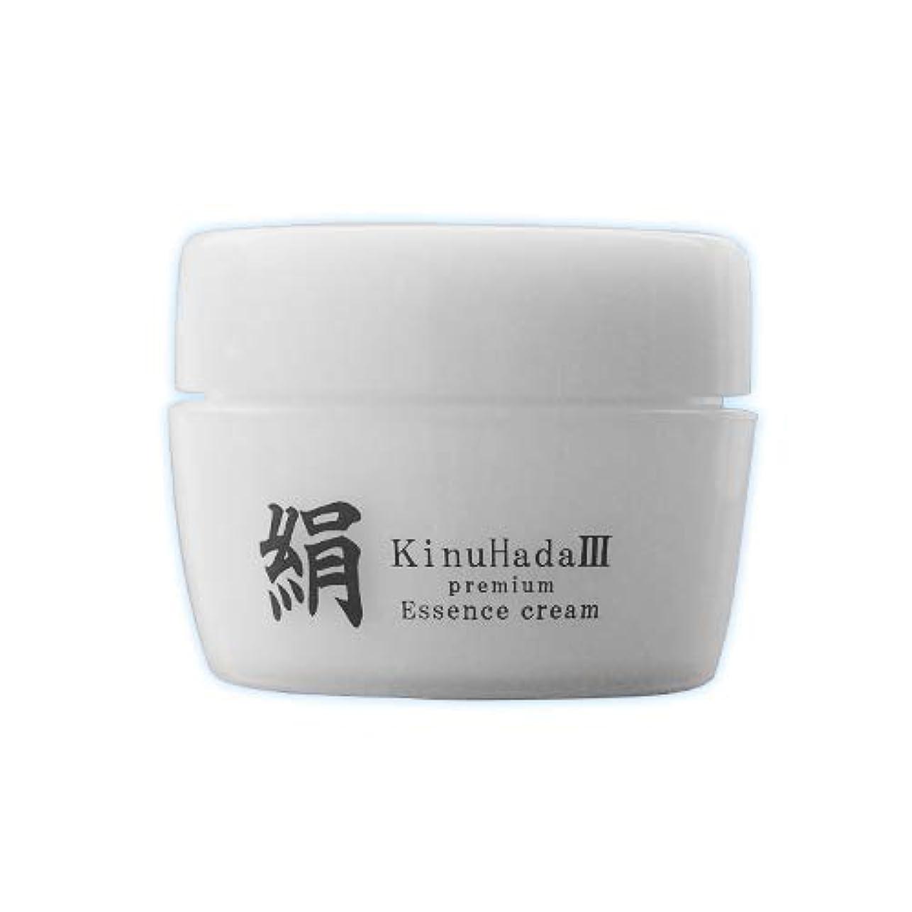 観察人物幻滅KinuHada 3 premium 60g オールインワン 美容液 絹