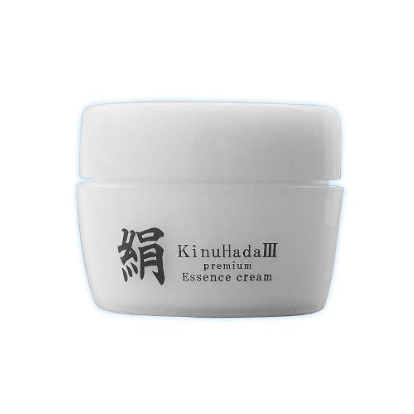 冷笑する付き添い人注意KinuHada 3 premium 60g オールインワン 美容液 絹