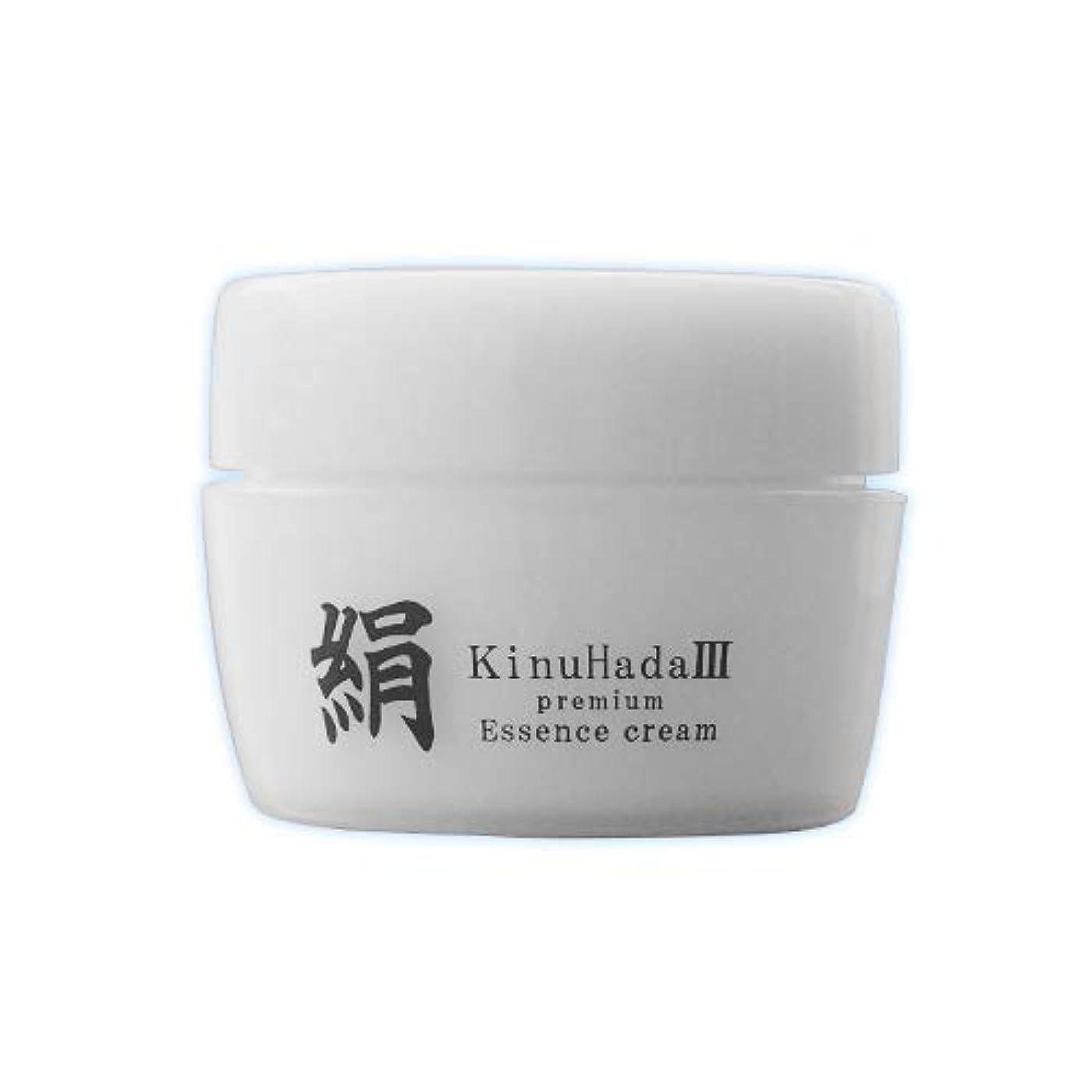 つまずくスパイラル教育学KinuHada 3 premium 60g オールインワン 美容液 絹