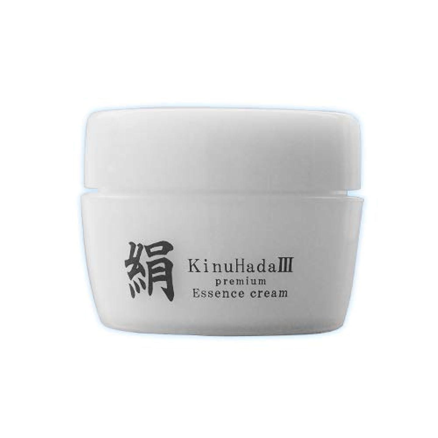 カイウスかるシンボルKinuHada 3 premium 60g オールインワン 美容液 絹
