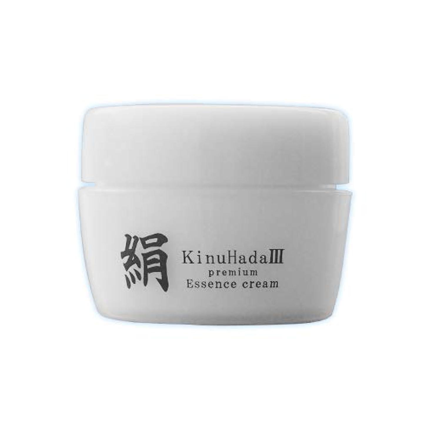 歩き回る適用済みしがみつくKinuHada 3 premium 60g オールインワン 美容液 絹