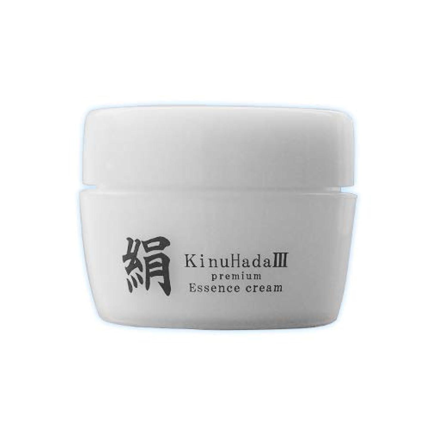 恐怖症お気に入りよろめくKinuHada 3 premium 60g オールインワン 美容液 絹