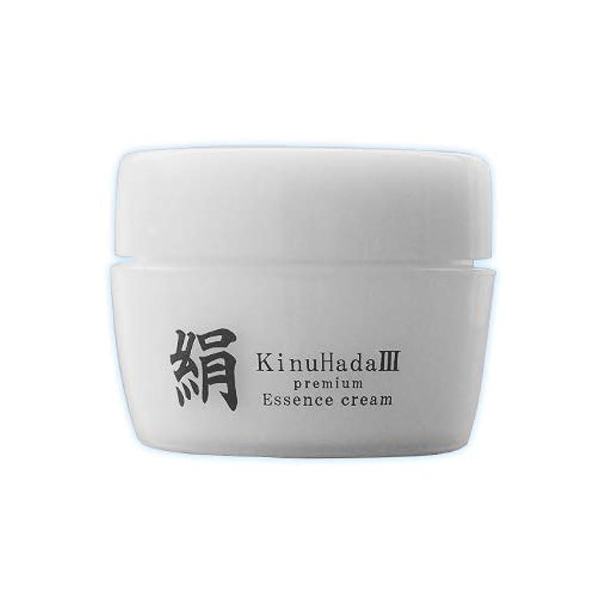別々に冊子多くの危険がある状況KinuHada 3 premium 60g オールインワン 美容液 絹