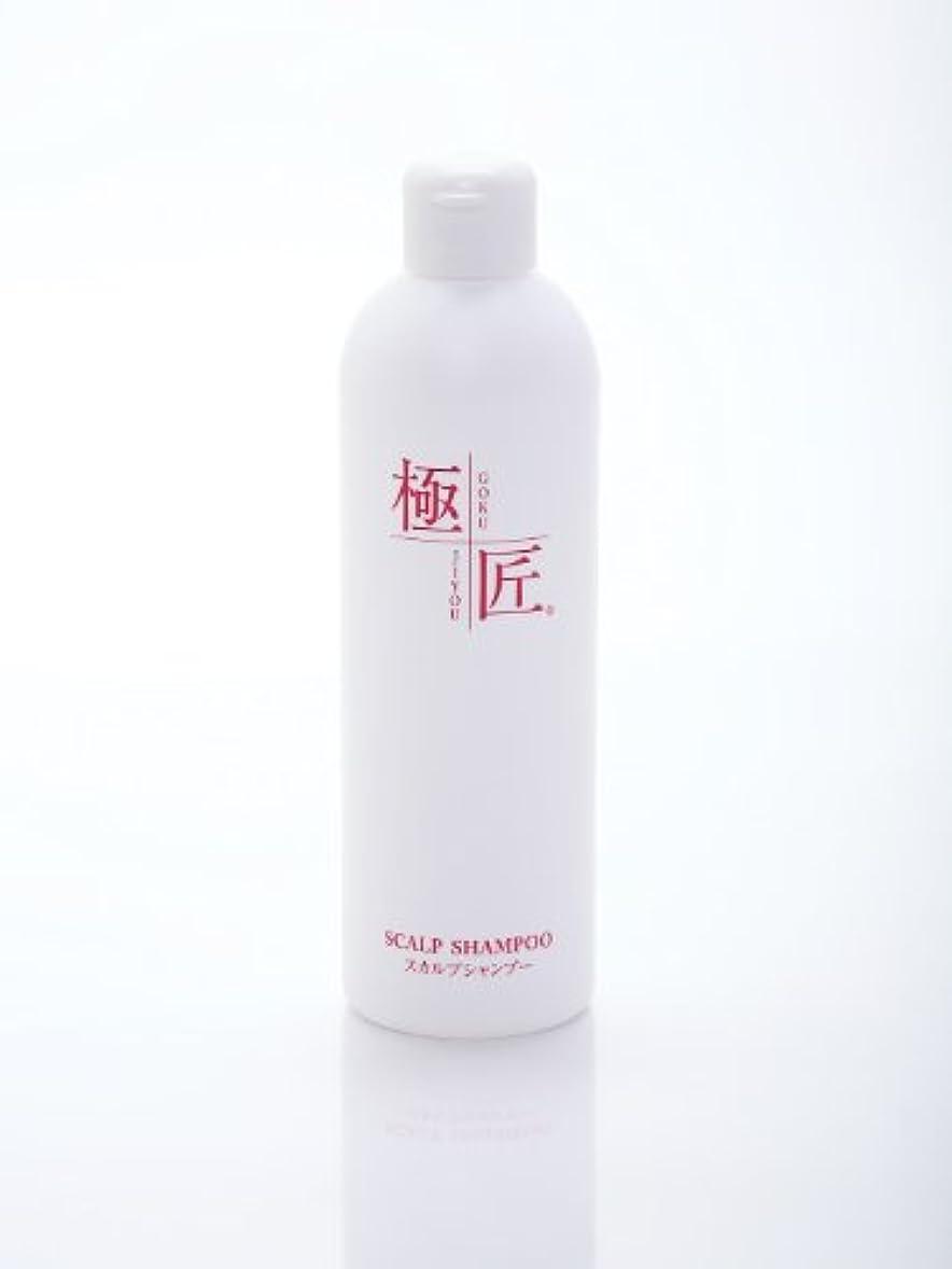 ジュースかかわらずやさしい極匠スカルプシャンプー 300ml (無香料)