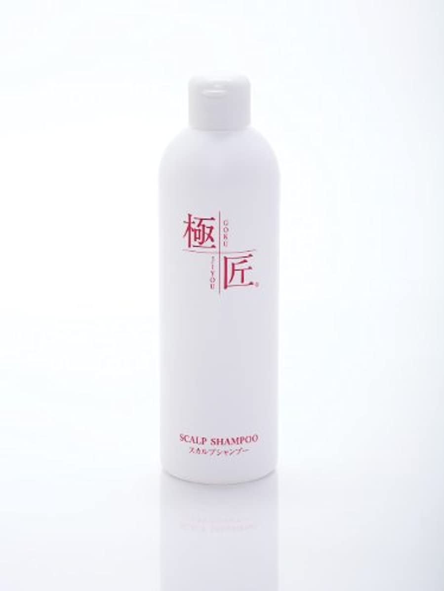 テラス和怖がらせる極匠スカルプシャンプー 300ml (無香料)