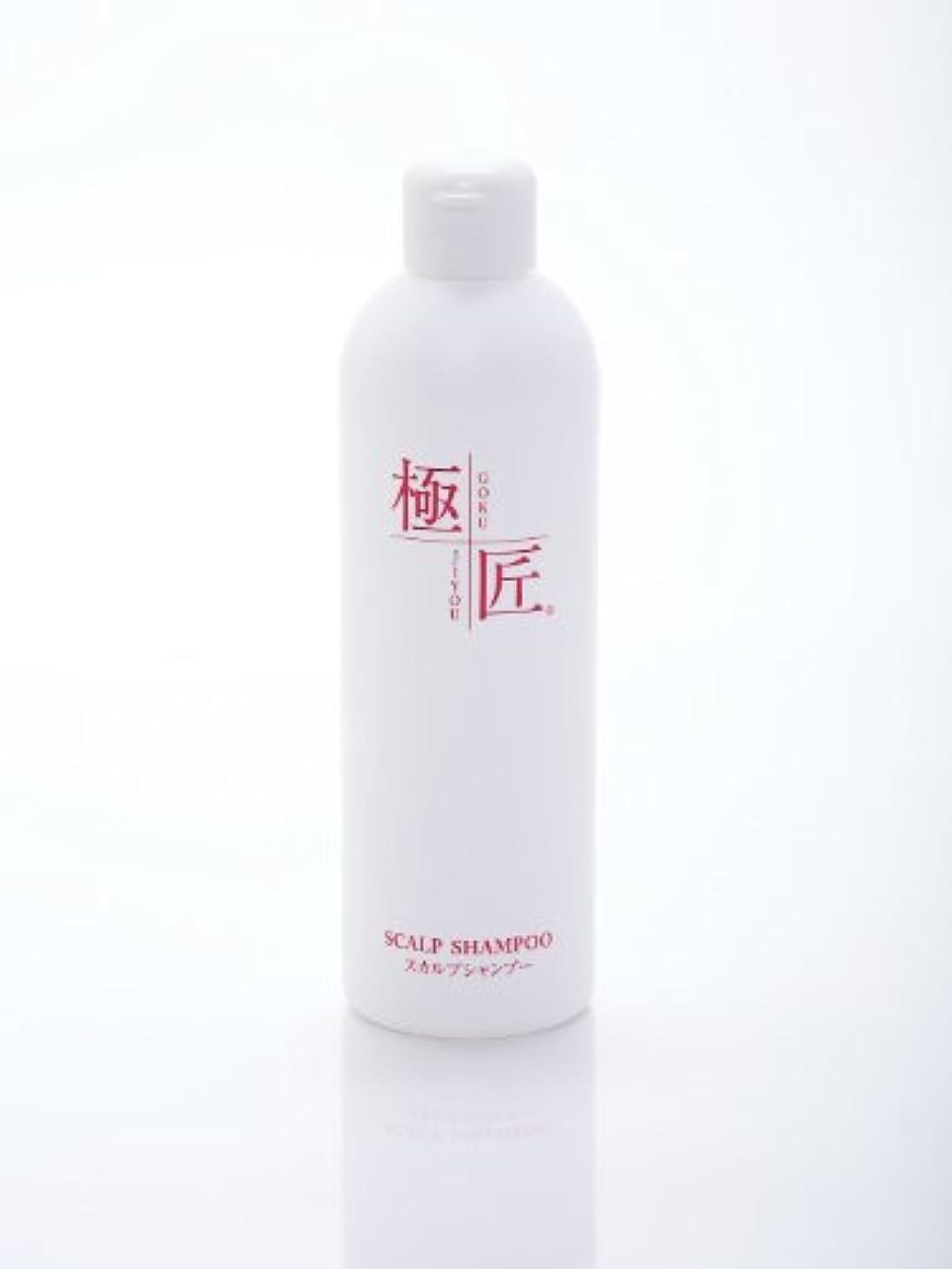 花瓶会計士唇極匠スカルプシャンプー 300ml (無香料)