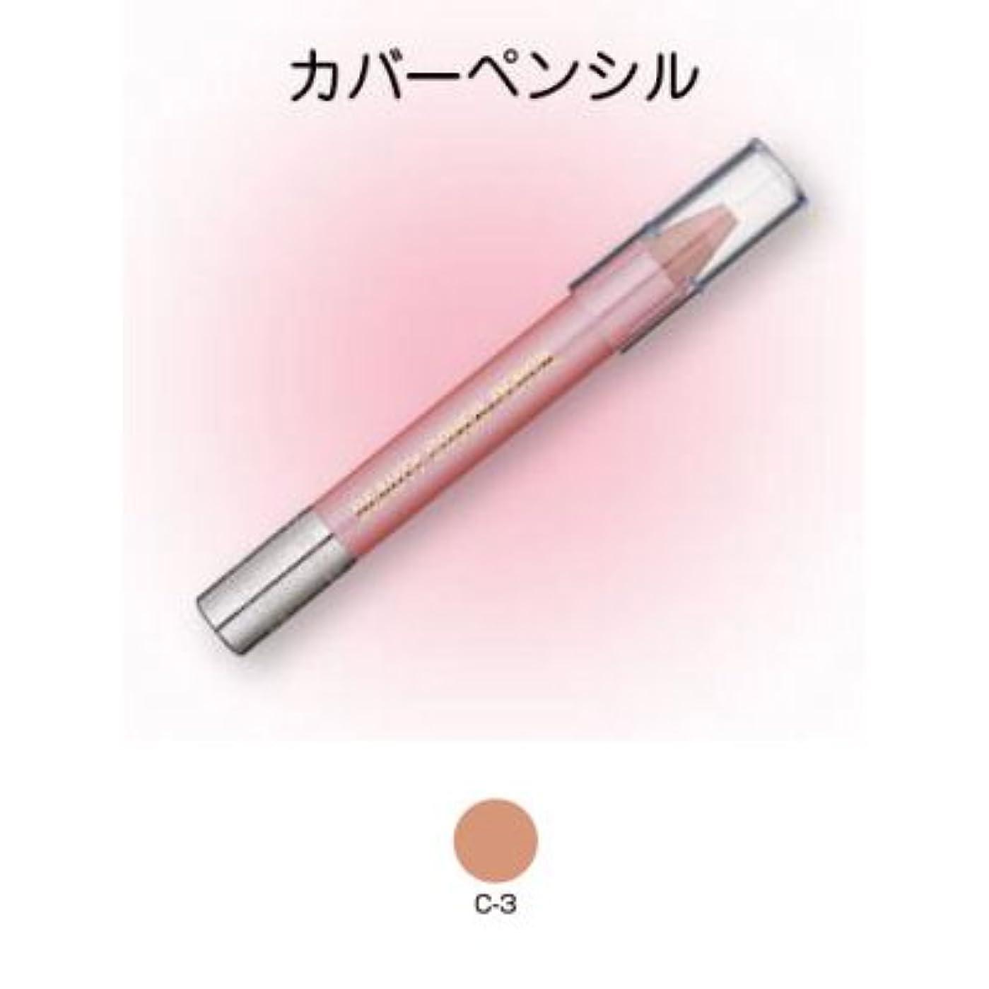 刑務所粘着性テラスビューティーカバーペンシル C-3【三善】