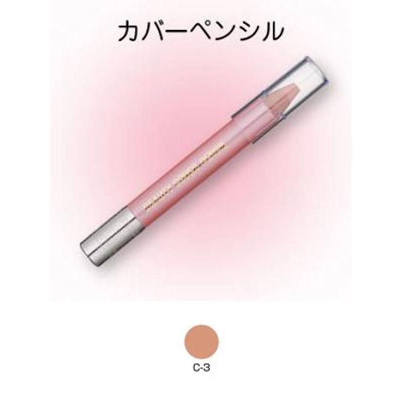 食欲前投薬ピークビューティーカバーペンシル C-3【三善】