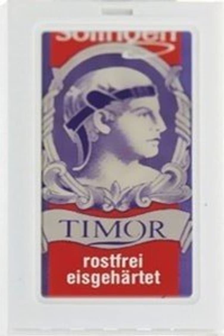 運河アメリカ連続的Timor Stainless Steel 両刃替刃 100枚入り(10枚入り10 個セット)【並行輸入品】