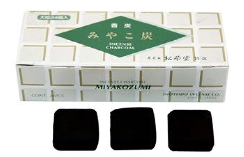 自動化ジャベスウィルソンマートShoyeido - 正方形木炭 タイプB - 24個セット