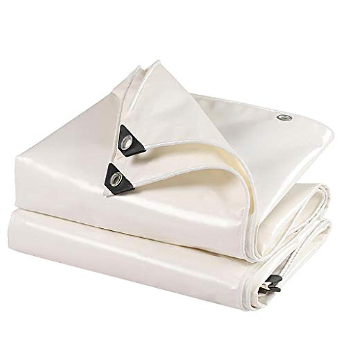 簡略化するバラエティリビジョンタープ 太陽と雨のためのテントタープ、グロメット付き3×4mタープ、引裂抵抗、アンチエイジング テント (Color : White, Size : 3×4m)