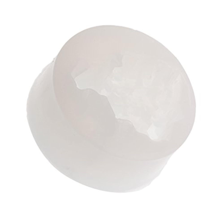 Baosity DIYジュエリー ペンダント 金型ツール シリコーン 氷の形 樹脂 手芸用具