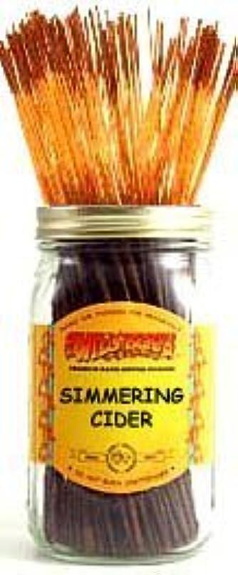 未就学横向きつばSimmering Cider - 100 Wildberry Incense Sticks [並行輸入品]