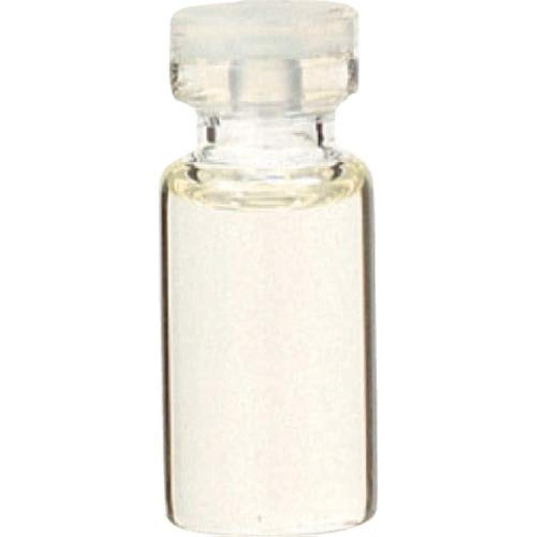 ラビリンス酸化するモックORGスペアミント 10ml