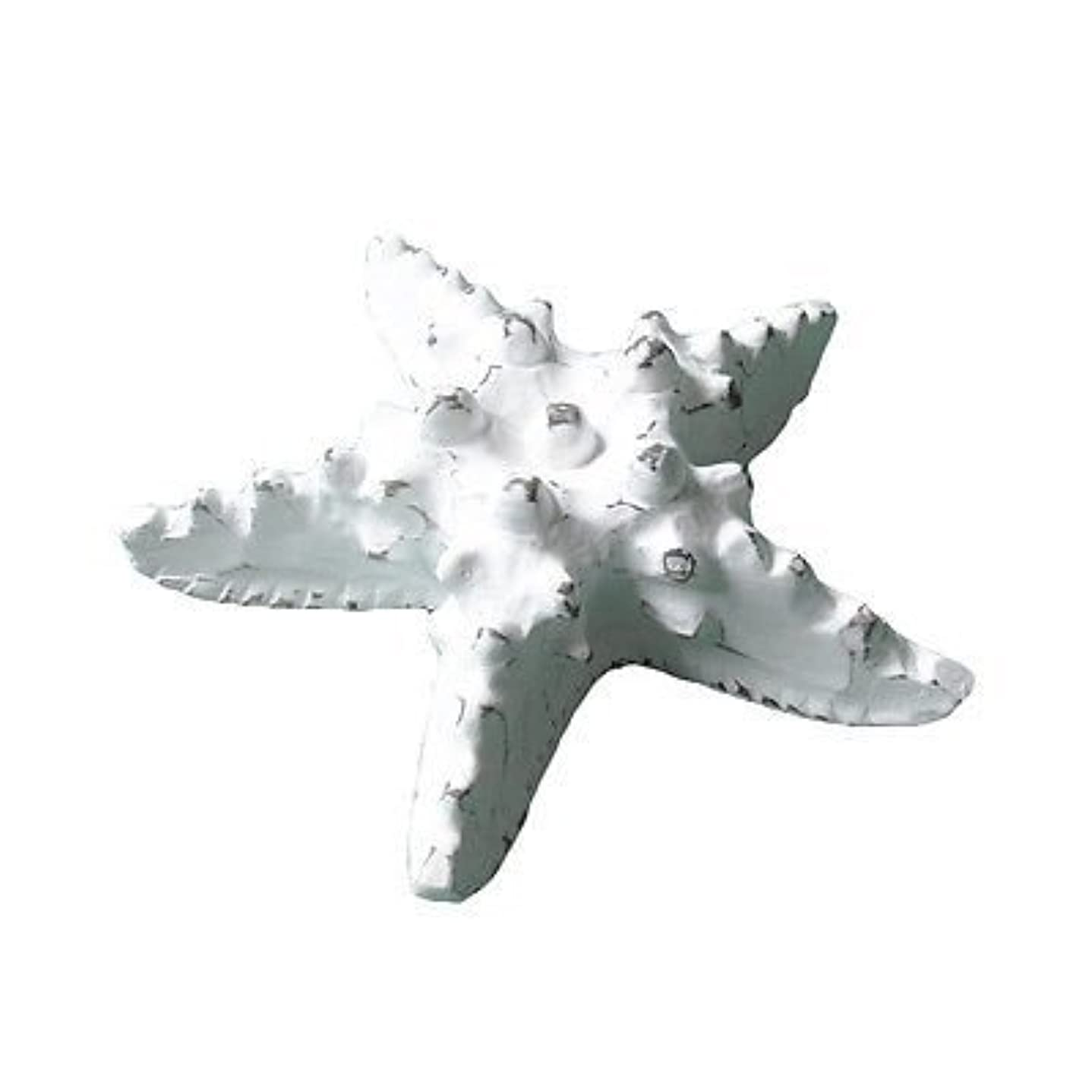 Medium Star FishホワイトWash木製20 x 20 x 7 cm手彫りShabby Chic