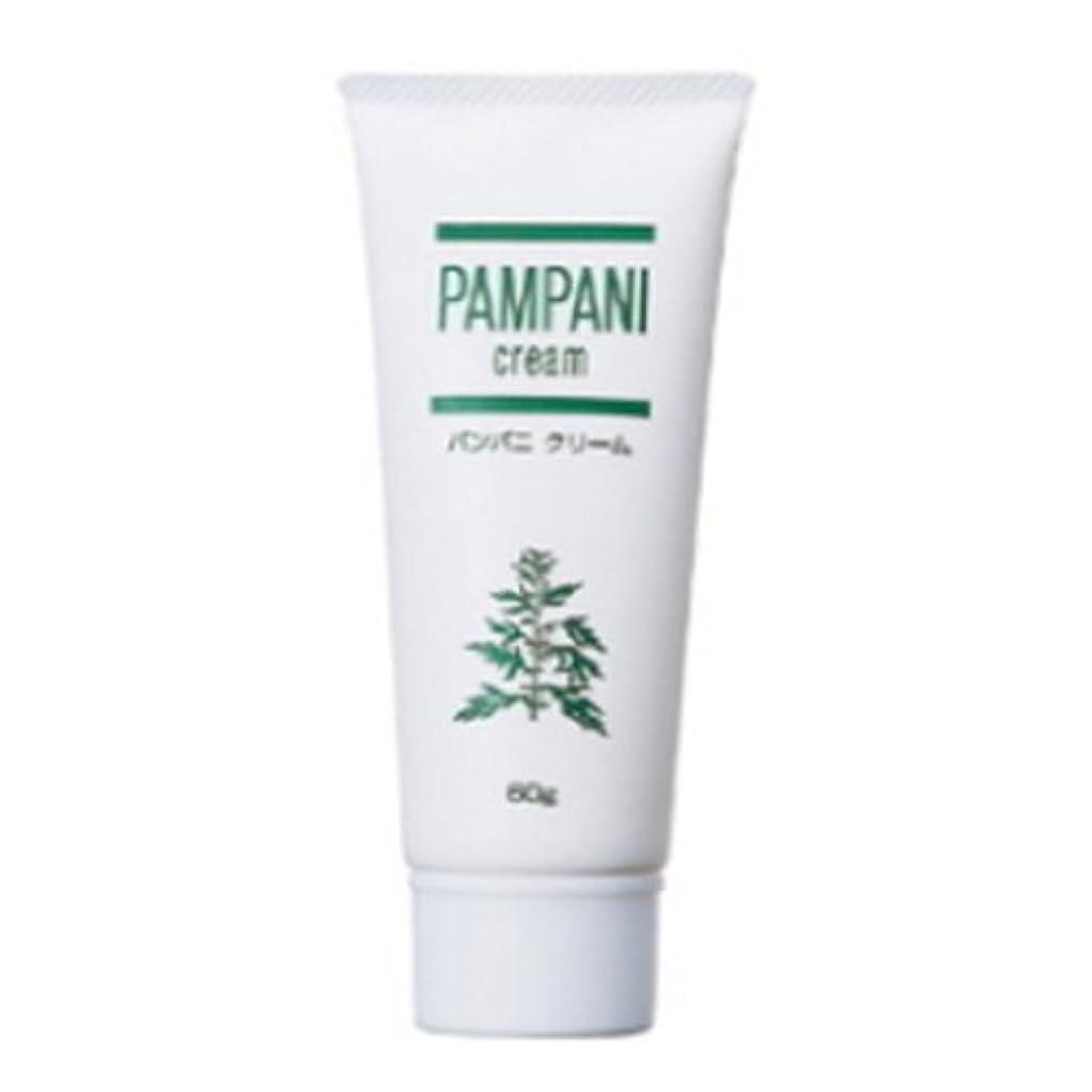 国歌キュービックバッフルパンパニ(PAMPANI) クリーム 60g