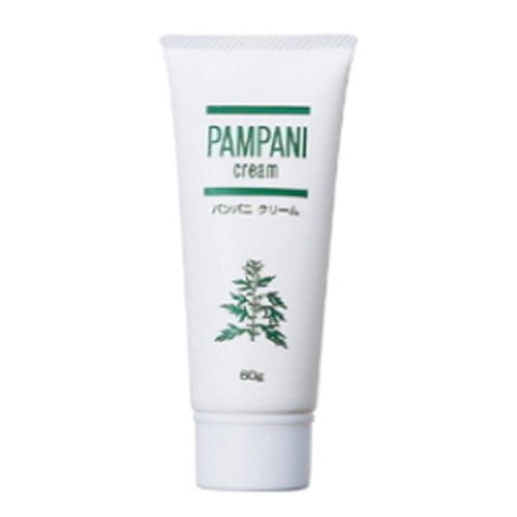 線形中性特徴パンパニ(PAMPANI) クリーム 60g