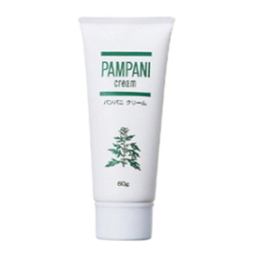 酸素ごめんなさい比類のないパンパニ(PAMPANI) クリーム 60g