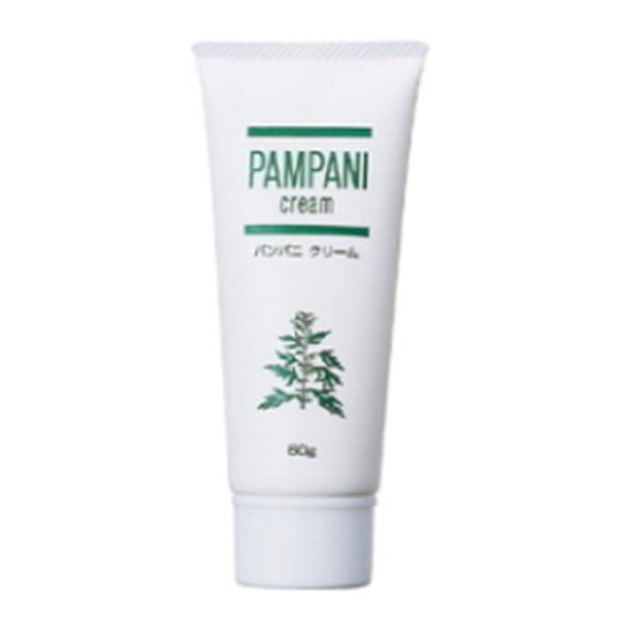 欠席鯨かび臭いパンパニ(PAMPANI) クリーム 60g