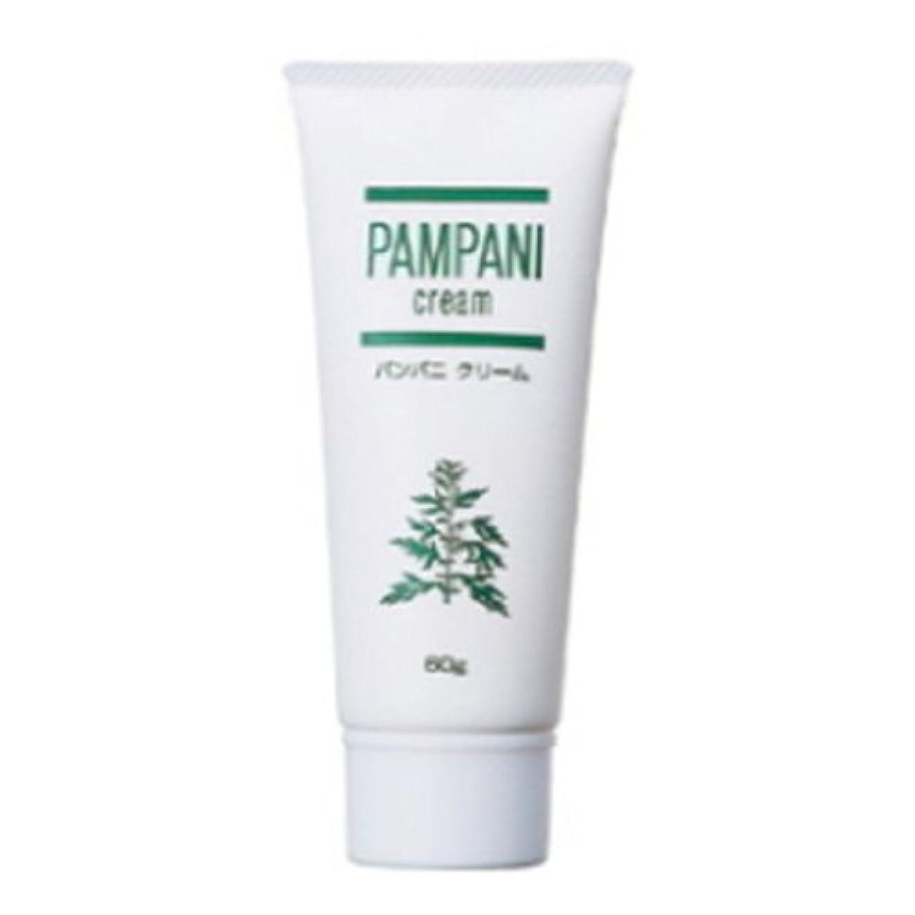 被る敷居全滅させるパンパニ(PAMPANI) クリーム 60g