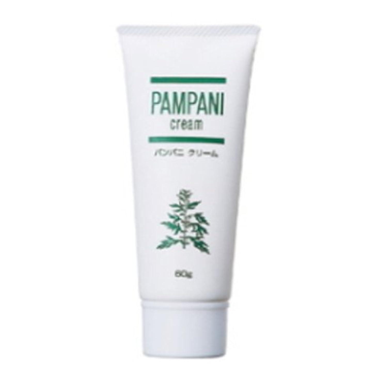 真夜中活性化する睡眠パンパニ(PAMPANI) クリーム 60g