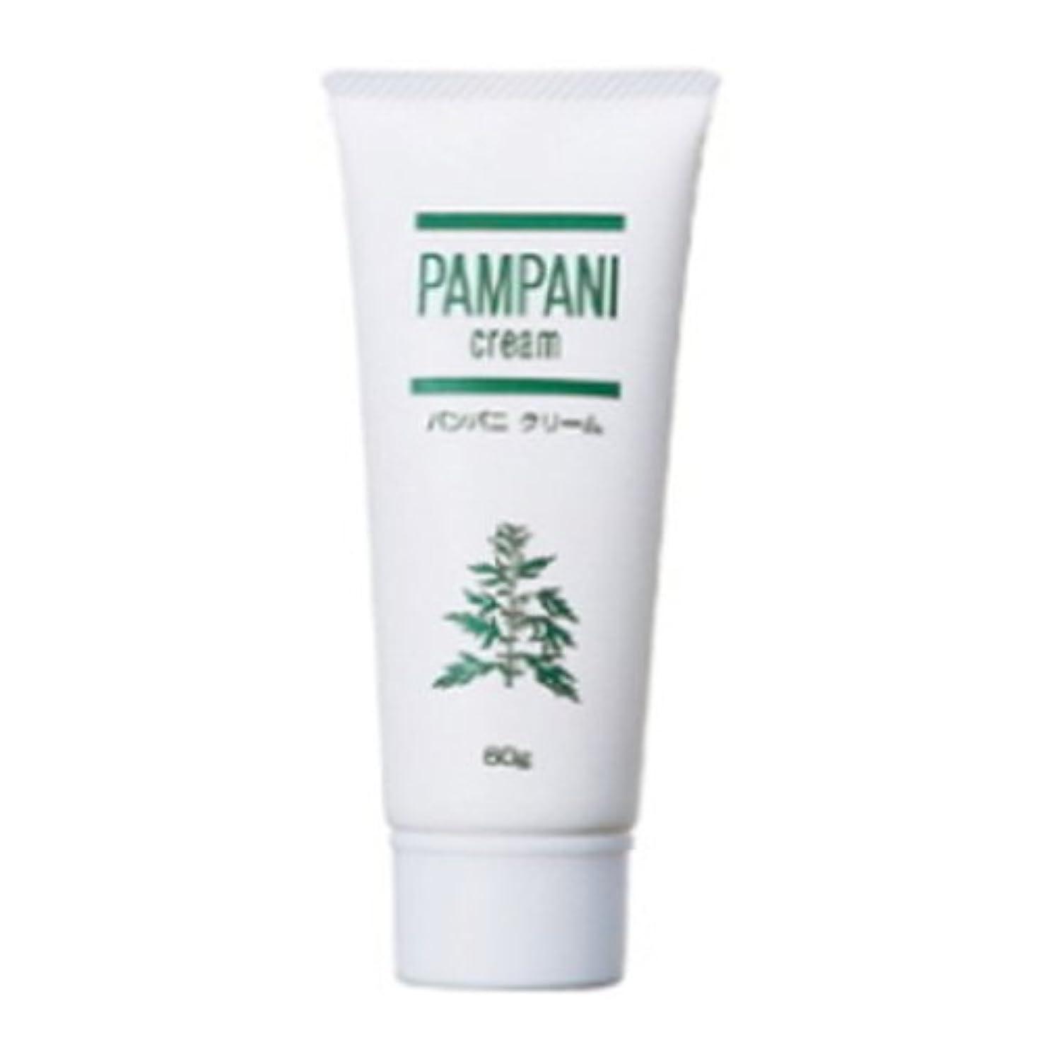 中央世界的に不十分パンパニ(PAMPANI) クリーム 60g