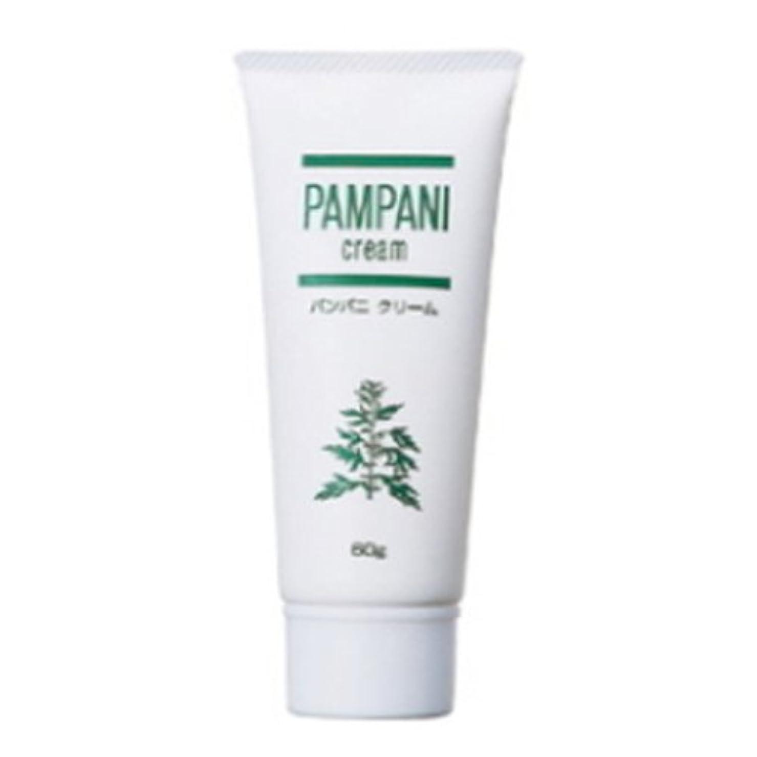 乱闘検出する歯パンパニ(PAMPANI) クリーム 60g