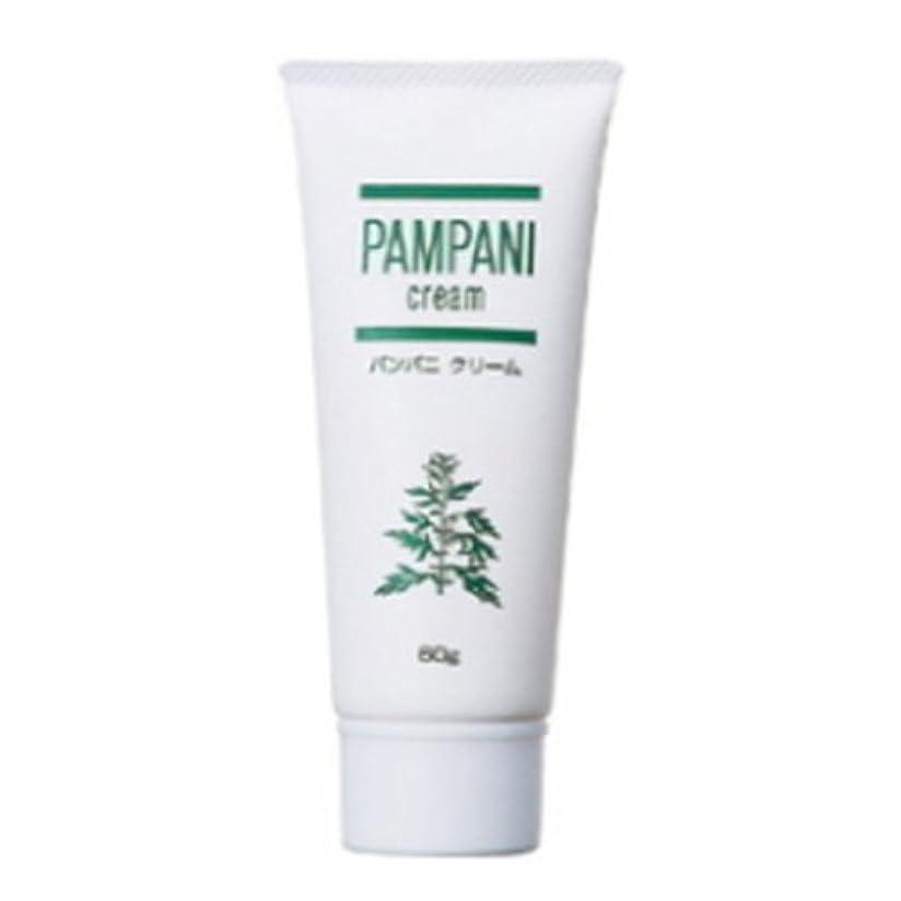 バケツ不利ハブブパンパニ(PAMPANI) クリーム 60g