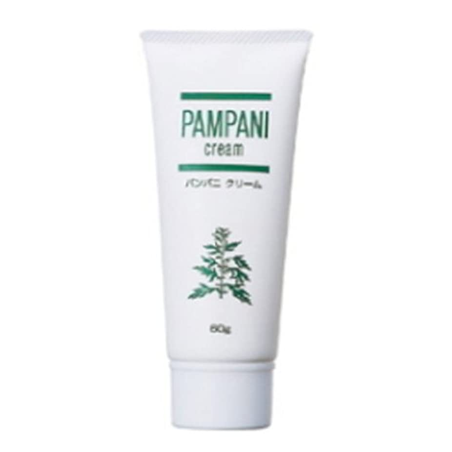 移行する蚊盲信パンパニ(PAMPANI) クリーム 60g