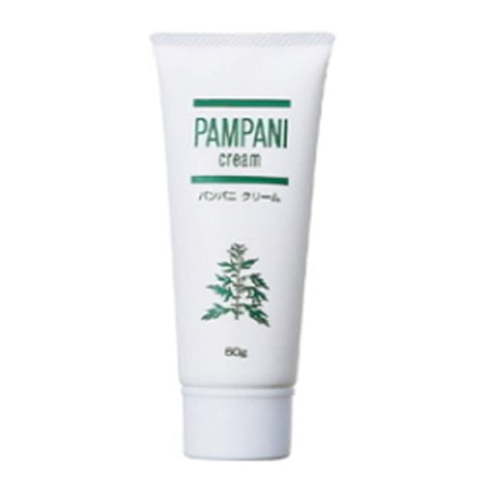 共感するジャグリングボタンパンパニ(PAMPANI) クリーム 60g