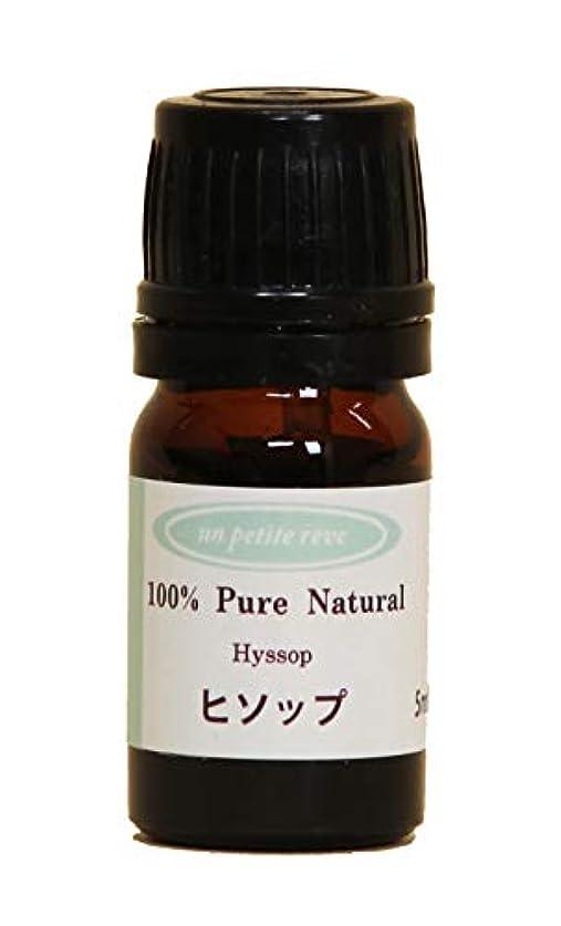 南アメリカ偽装する汚れるヒソップ 5ml 100%天然アロマエッセンシャルオイル(精油)