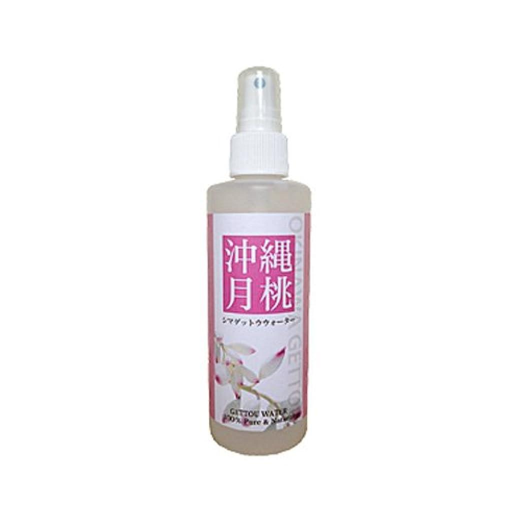パイ拒絶具体的に月桃蒸留水 フローラルウォーター シマ月桃葉100%使用 200ml