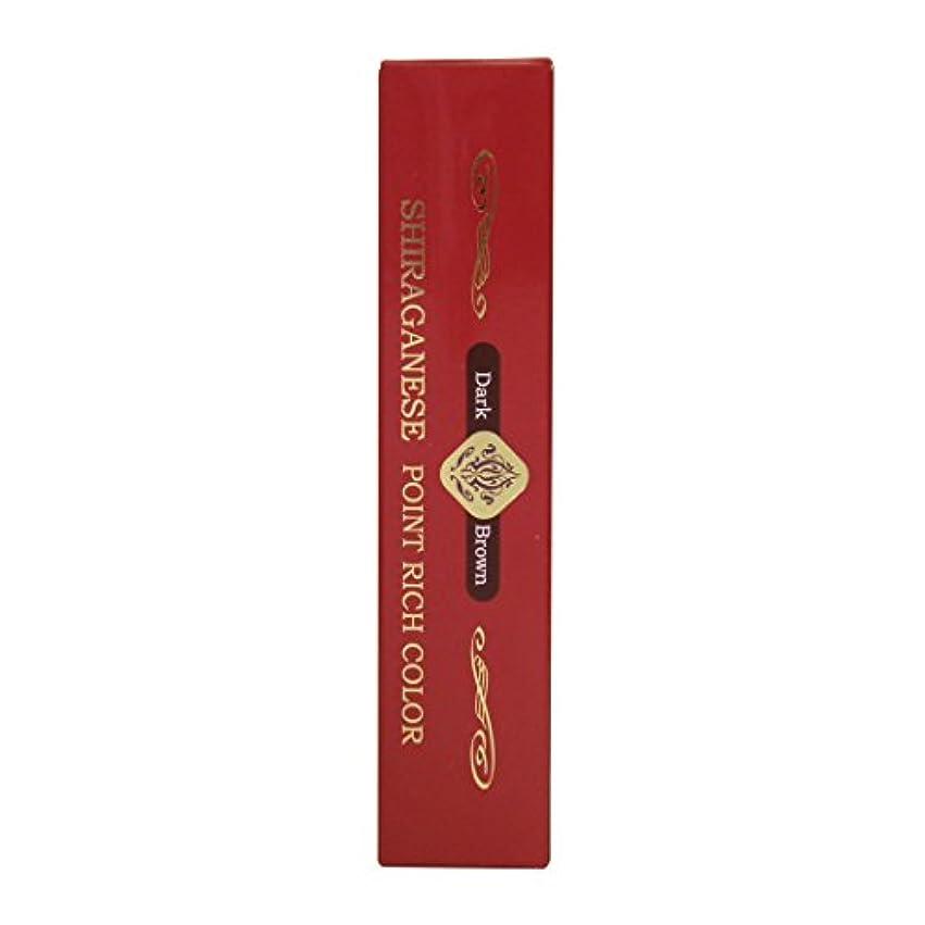 疎外するゲージ凝縮するビアント シラガネーゼ ポイントリッチカラー ダークブラウン 20g