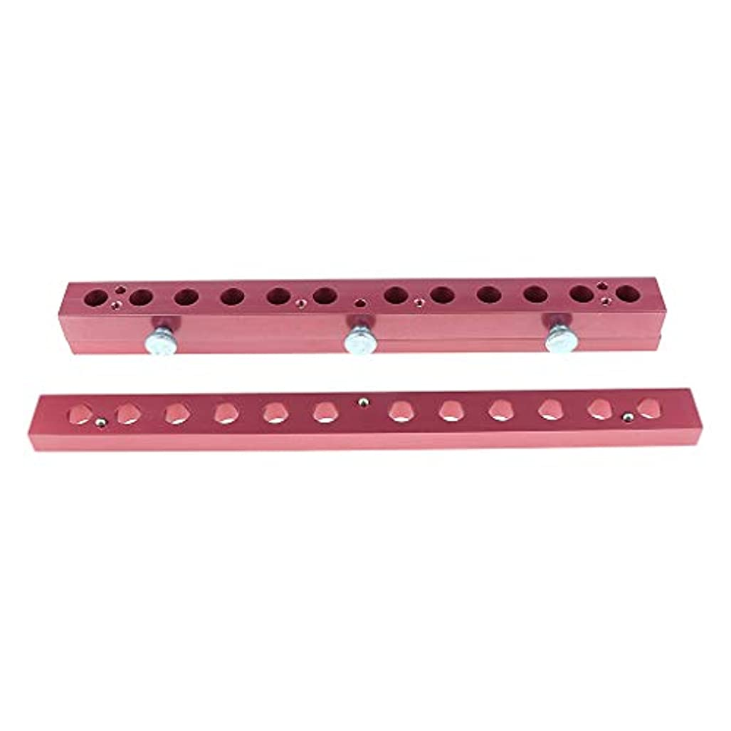 ロゴ姪明示的に12のキャビティ穴の口紅型アルミニウム12.1mmの管DIYの唇型の詰物 - 2way