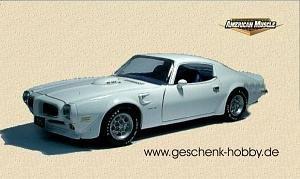 1973 Pontiac Firebird Trans Am 1:18 ERTL 10 Fastest [並行輸入品]