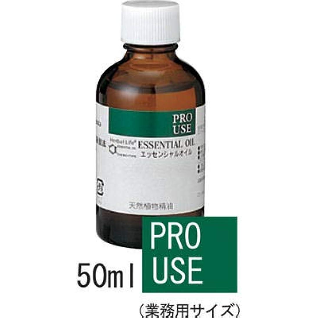 スティック上院鎮静剤エッセンシャルオイル(精油) フランキンセンス(乳香、オリバナム) 50ml 【生活の木】